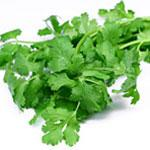 Image for Coriander - Fresh